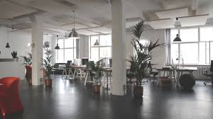 Placing plants in the office can help in promoting a healthy work environment.